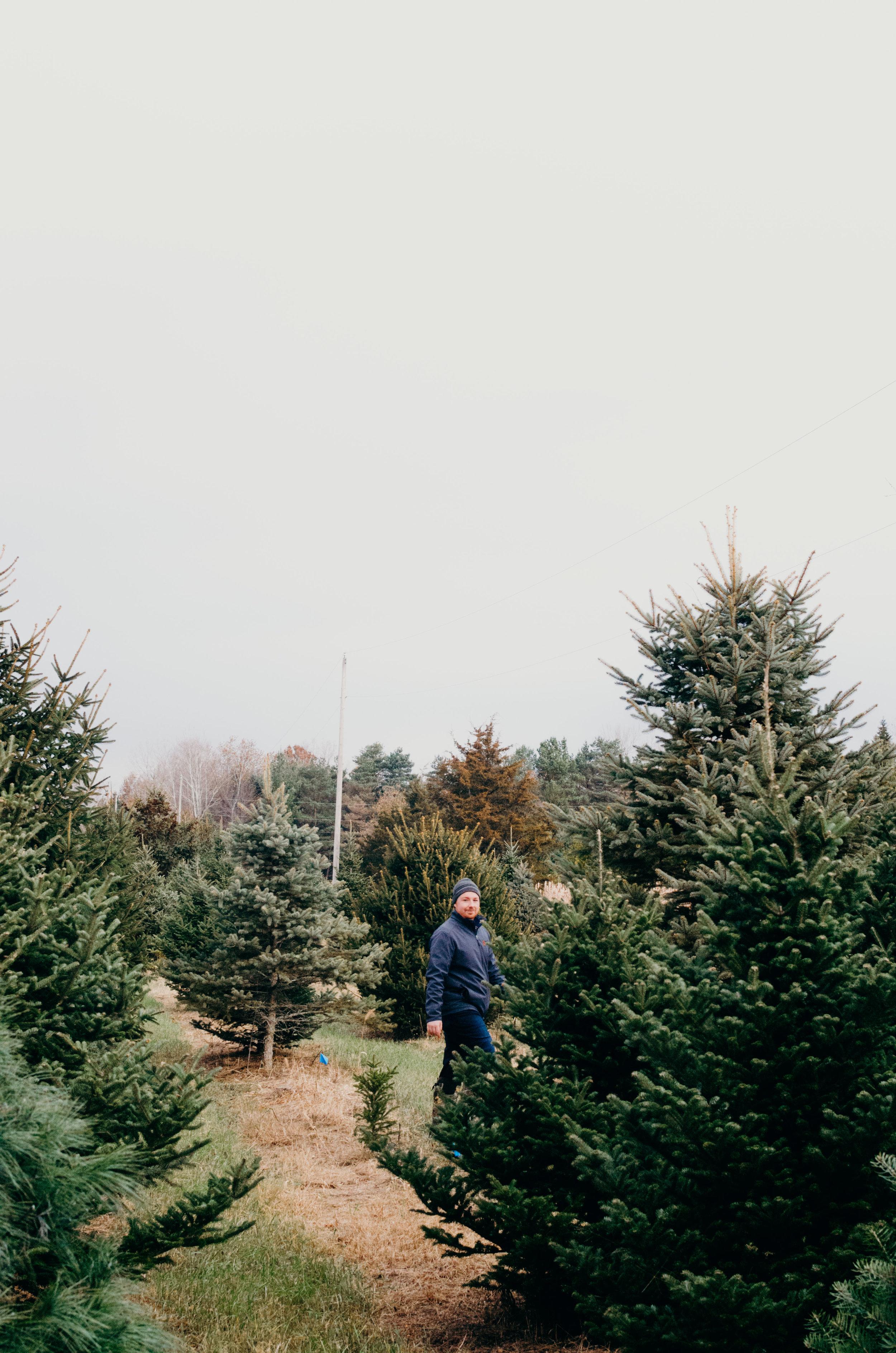 Wendling_Boyd_Tree_Hunt_2017-15.jpg