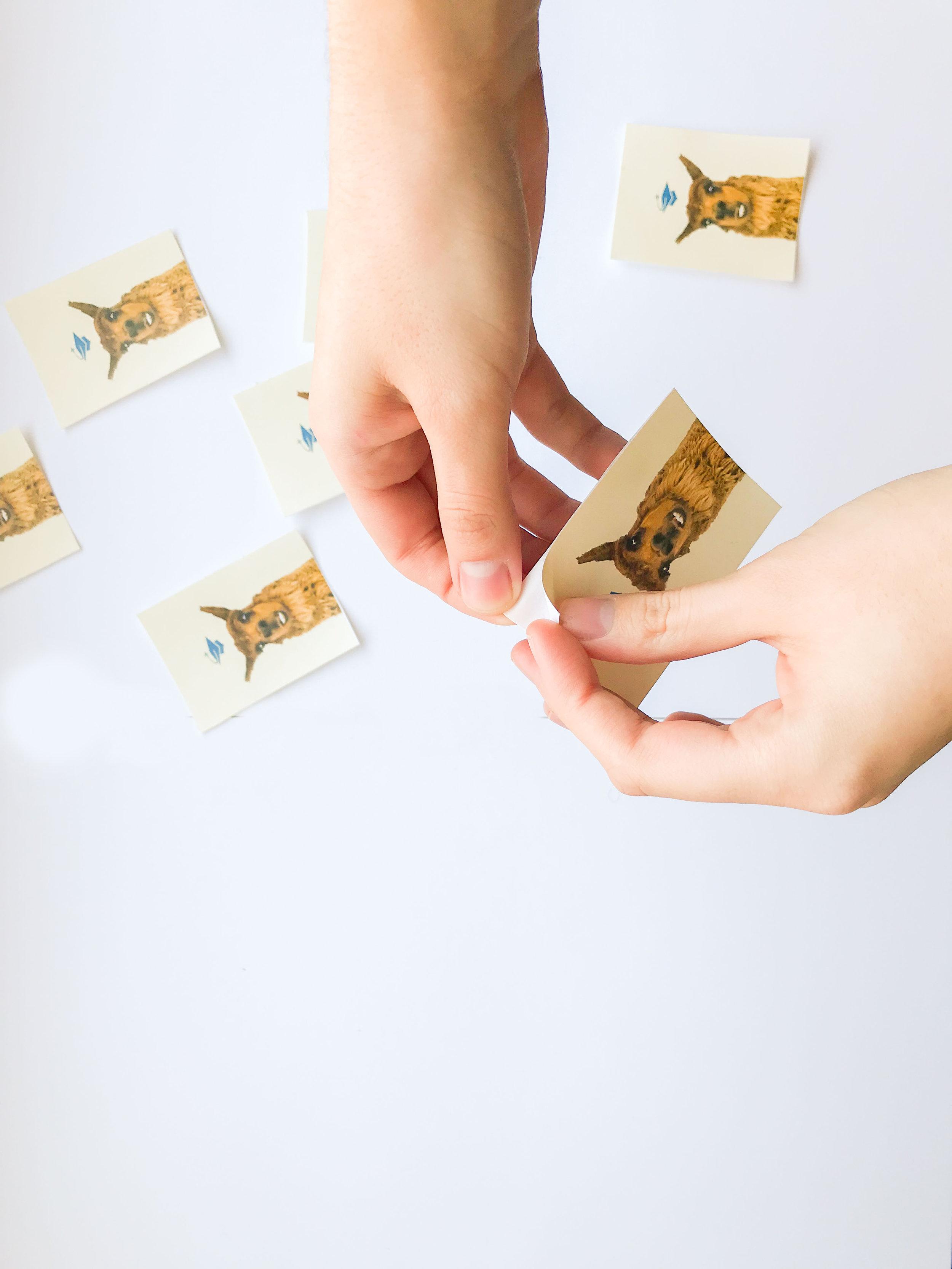 stickers1`-3.jpg