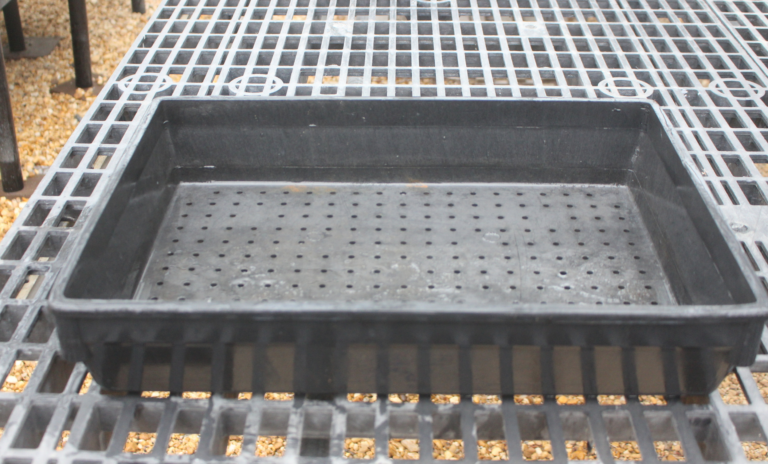 Use a tray with holes in the bottom for drainage.