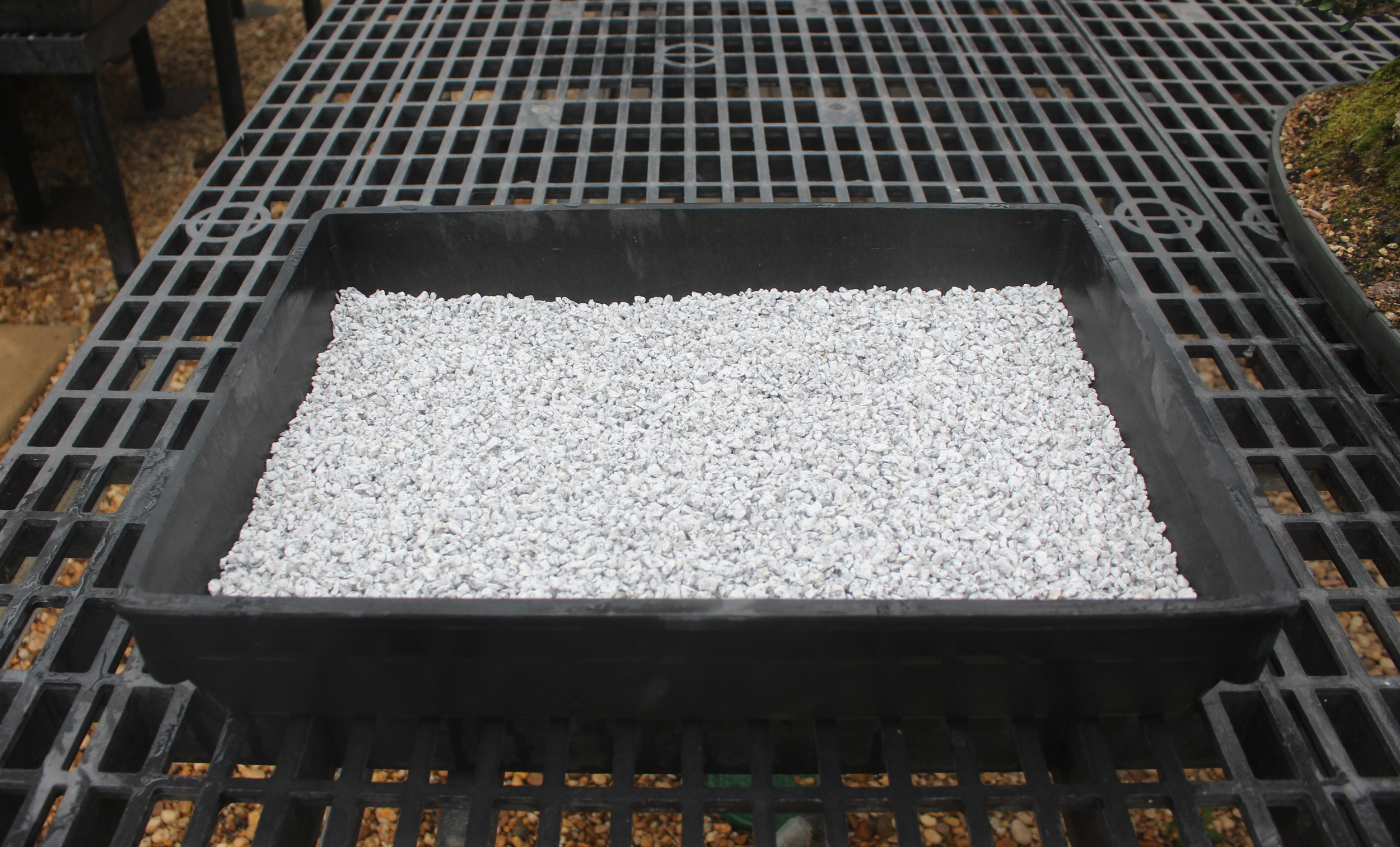 This type of the crushed stone keeps the container moist.