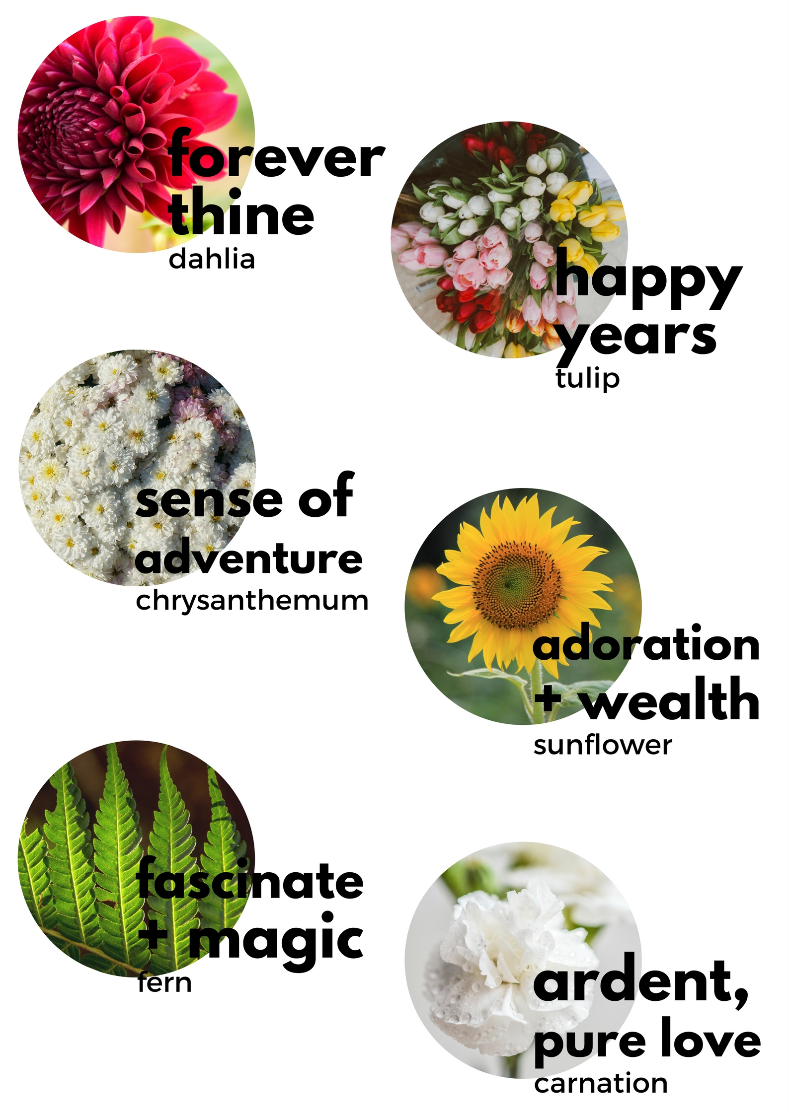 wedding flower meanings in the language of flowers