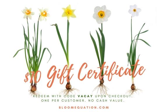 vacay gift certificate.jpg