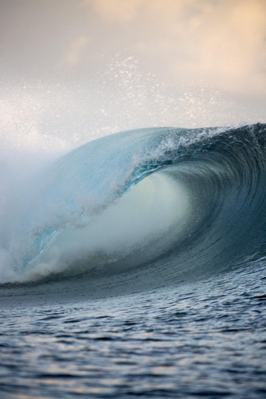 TashaVanZandt_TAQ_Tahiti_KOUF5621.jpg