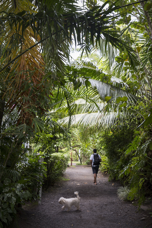 TashaVanZandt_TAQ_Tahiti_BH6A5965.jpg