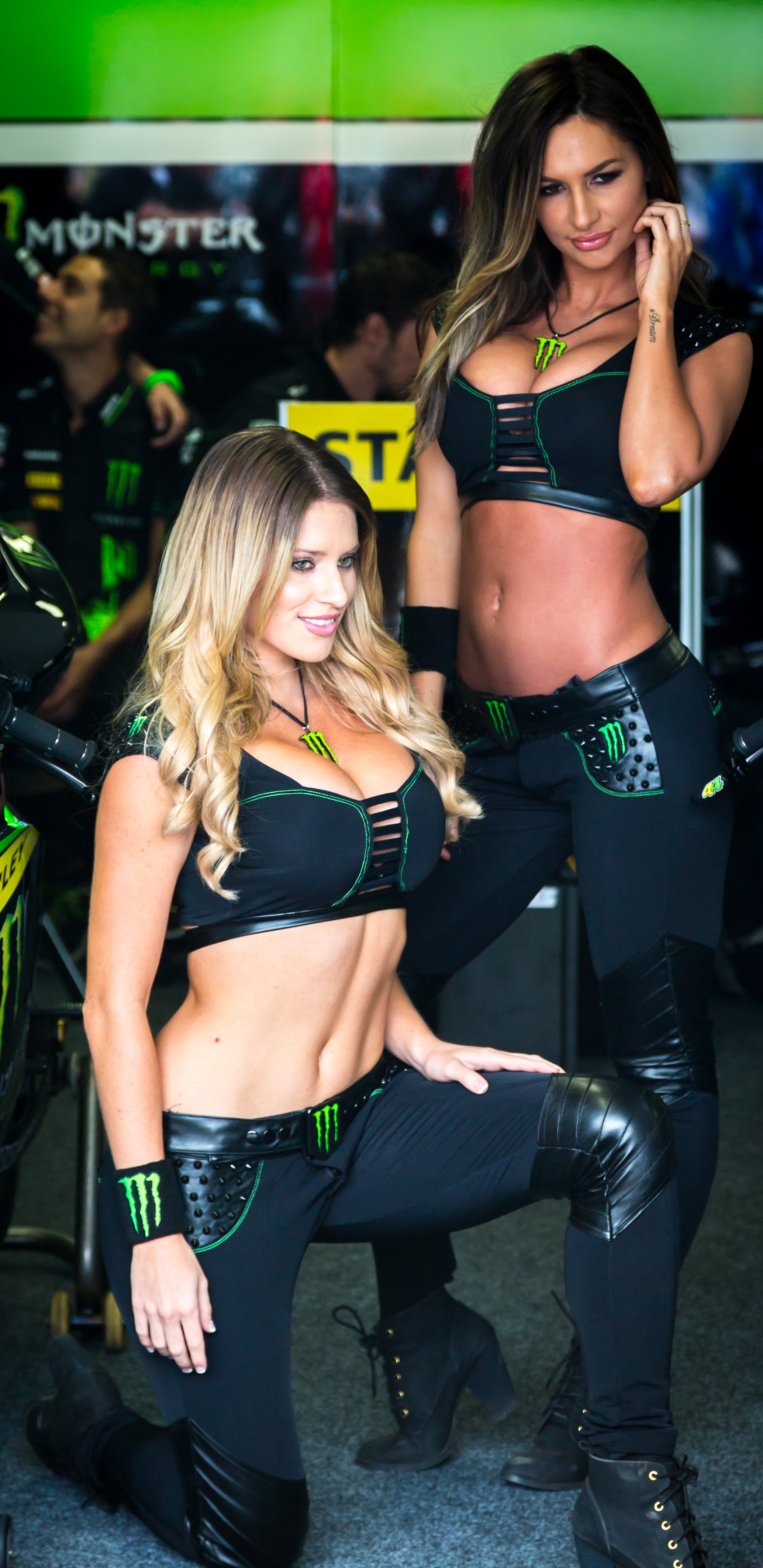 Monster Energy Drink MOTOGP models