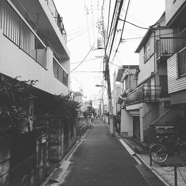 Japan knows style best. Esthetic 101! Hello from shunjuku-ku!