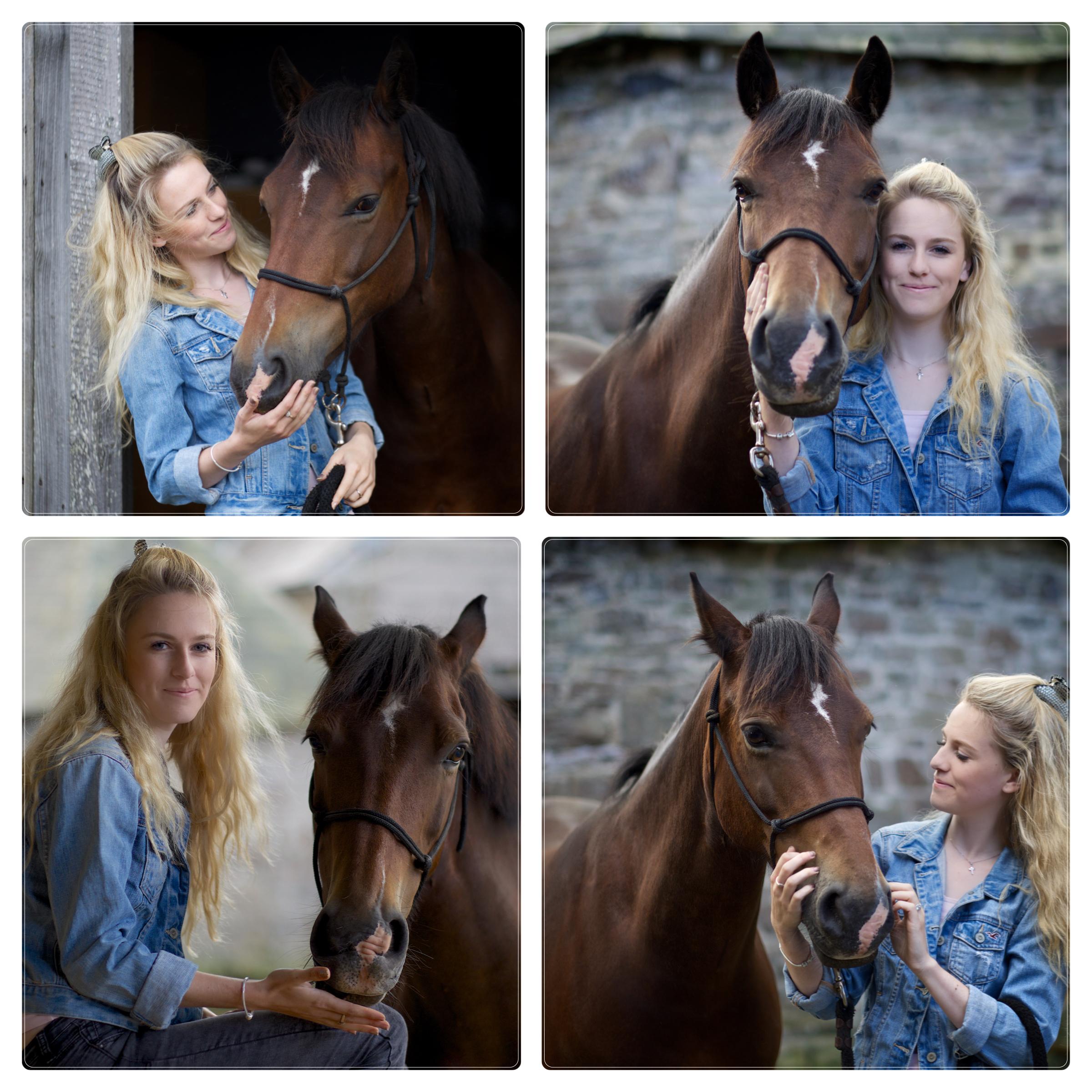 Equine.jpg