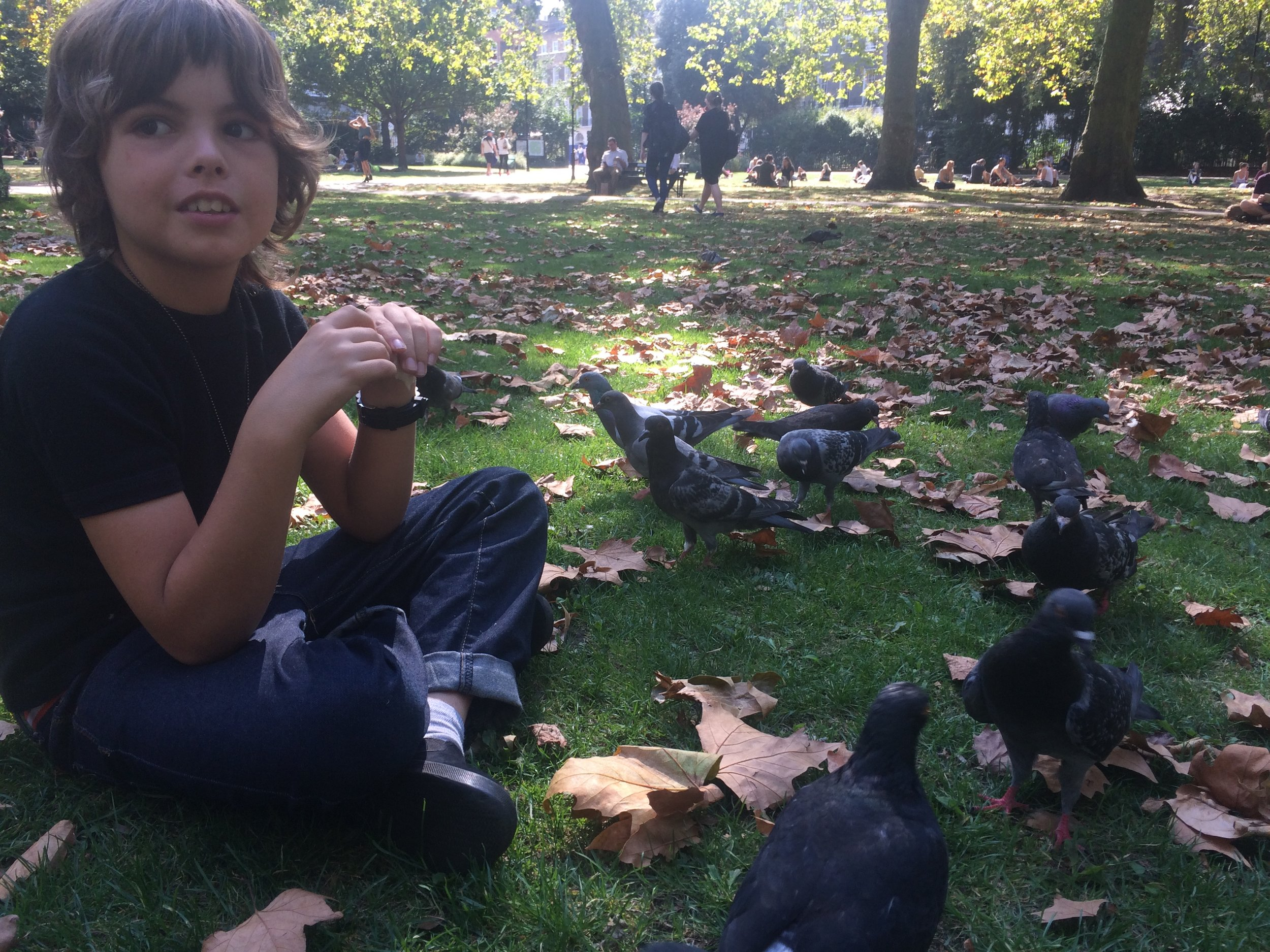 we had a picnics sometimes and i feed some birds and all of the birds come to me.