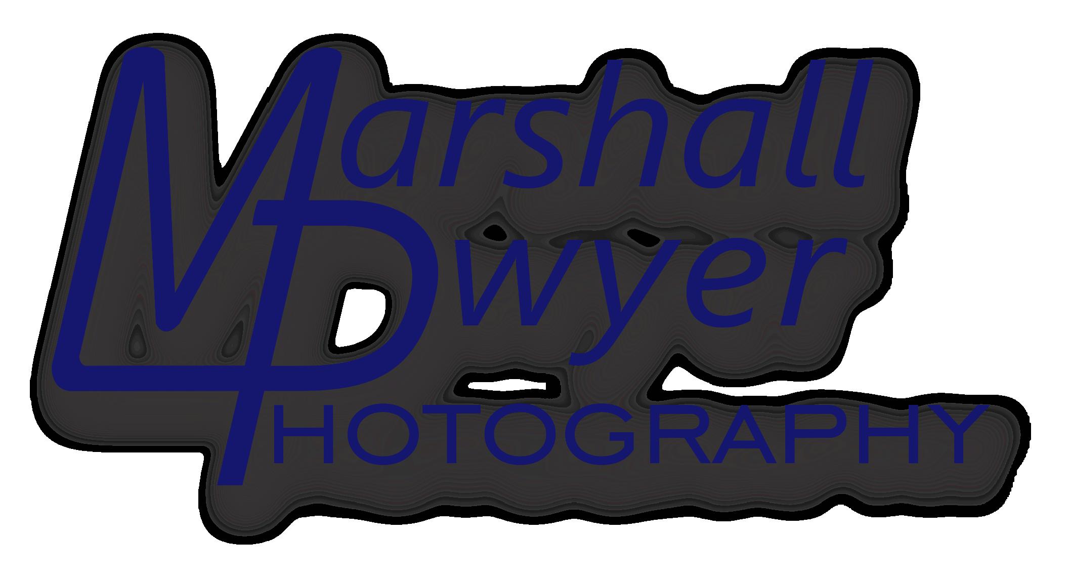 2015-MDP-Logo2.png