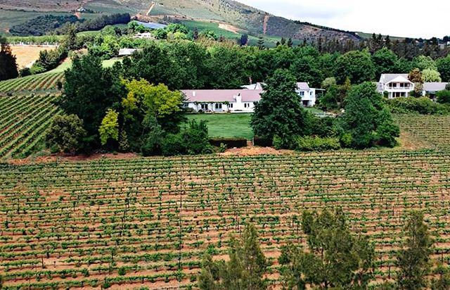 An aerial shot of our cab/sav vineyards and the homestead. . . . #camberlwines #camberley #winefarm #cabernetsauvignon #vineyards #photography #stellenbosch