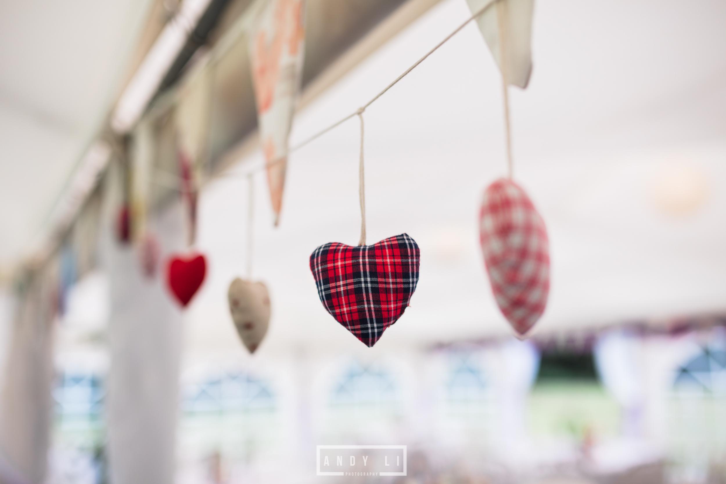 Festival Wedding Shropshire-Andy Li Photography-026.jpg