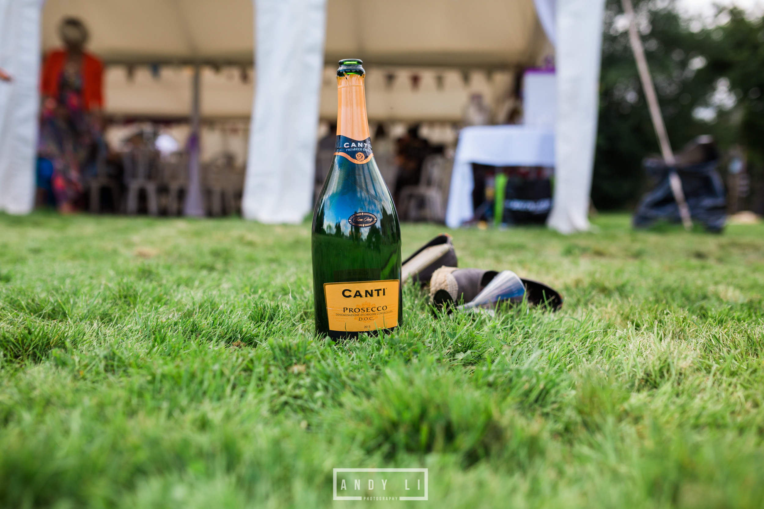 Festival Wedding Shropshire-Andy Li Photography-348.jpg