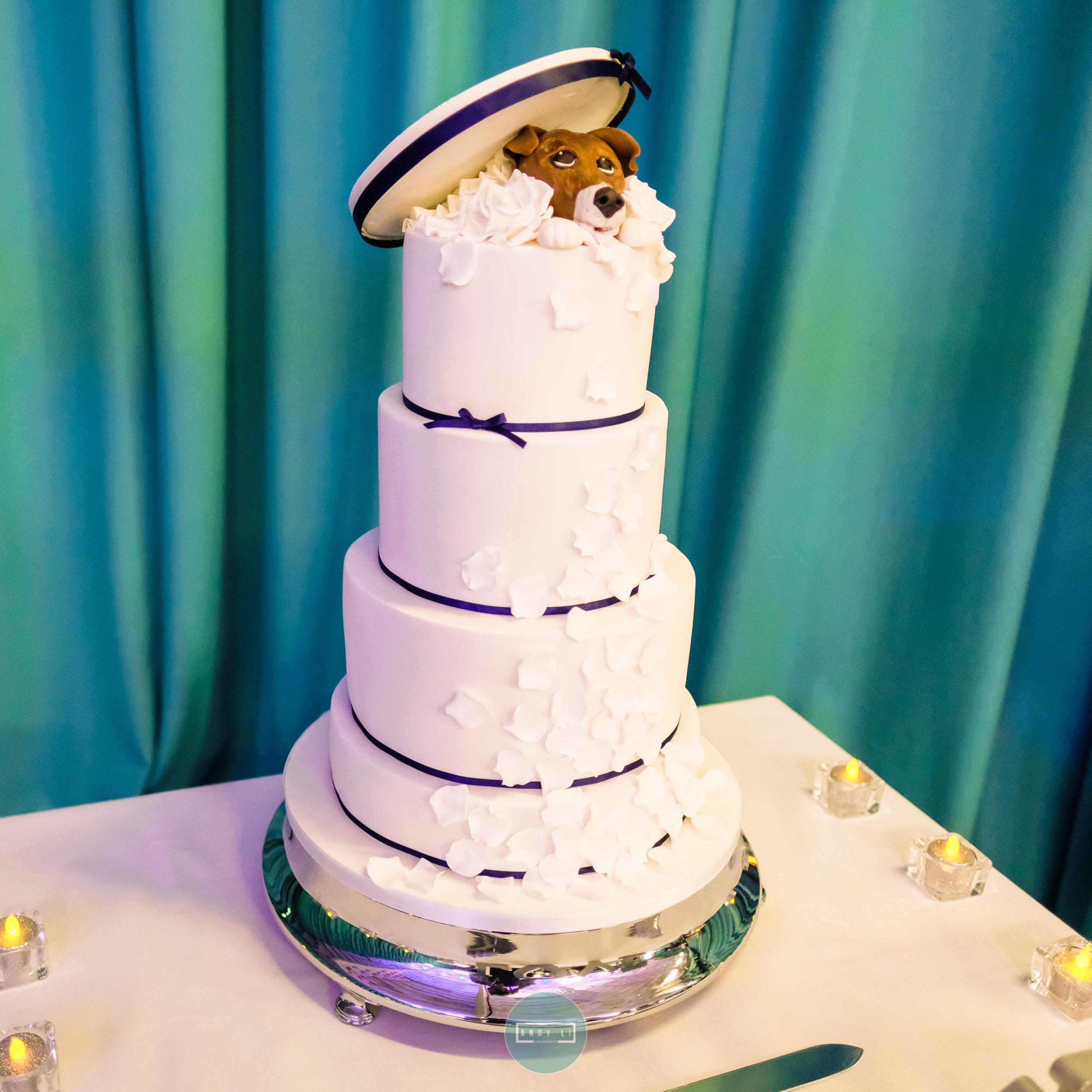 Lilleshall Hall Wedding Photographer-055-XPRO1267.jpg