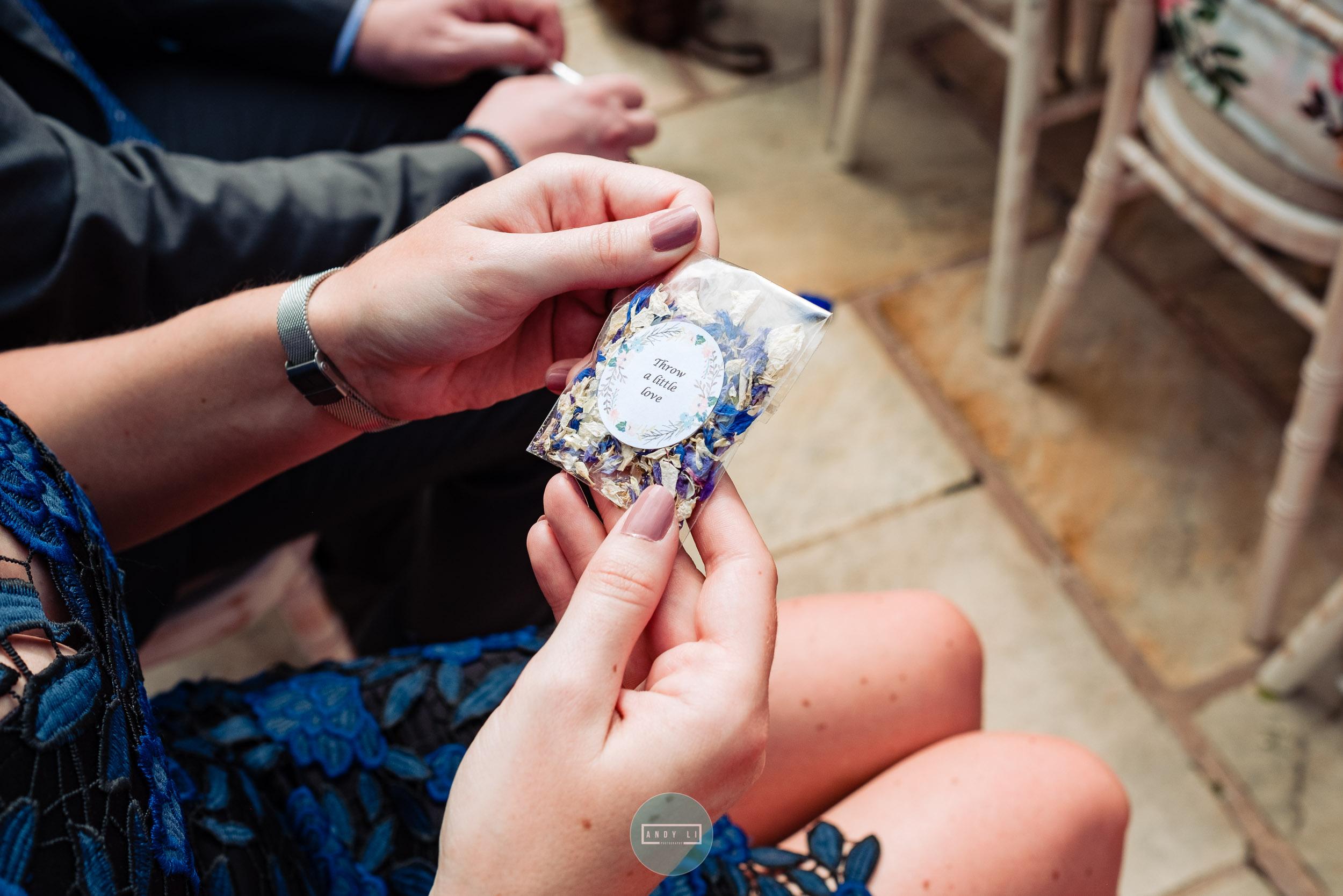 Rowton Castle Wedding Photographer-035-AXT22609.jpg