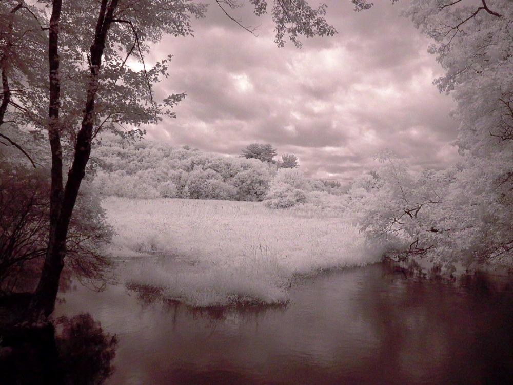 Haynes Meadow - Hop Brook