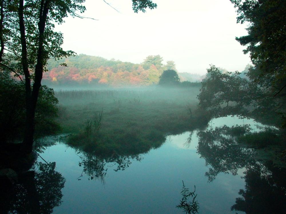 Haynes Meadow - Hop Brook Autumn