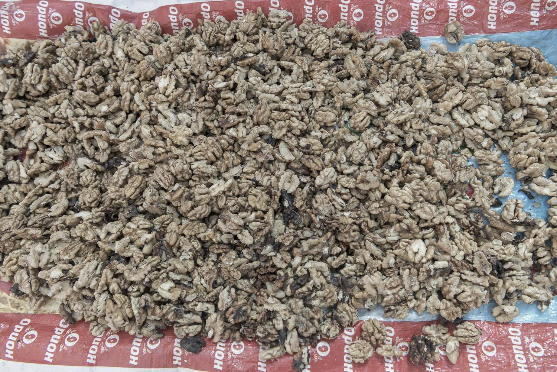walnuts-shelled-Kyrgyzstan-jo-kearney-video-photography.jpg