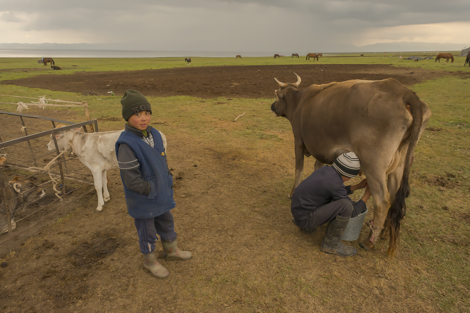 boy-milking-jo-kearney-photography-video-kyrgyzstan-nomads-milking-donkeys-photos-prints.jpg