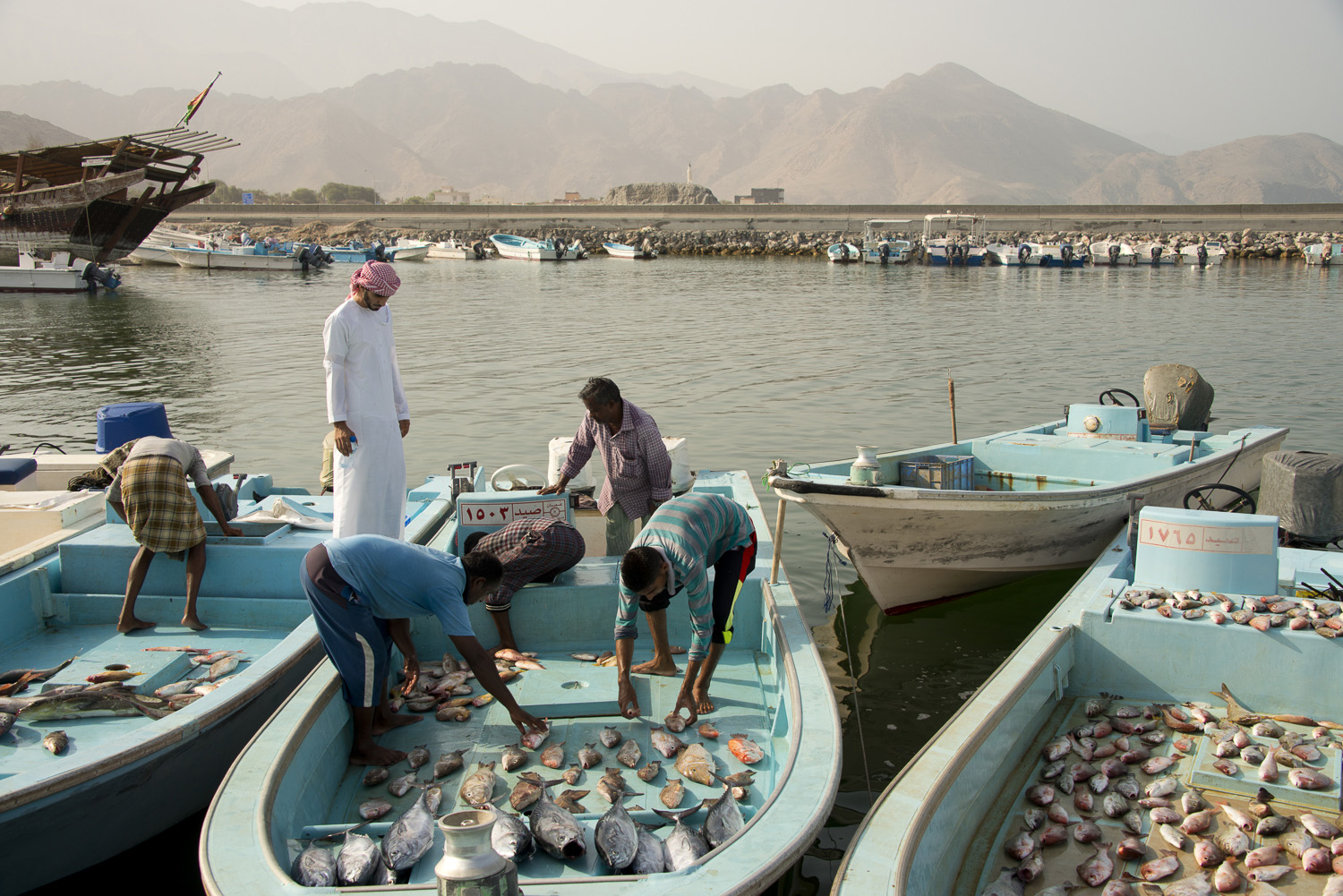 jo-kearney-video-photos-photography-travel-portraits-prints-for-sale-Oman-Dibba-fishing-port-traditional-port.jpg