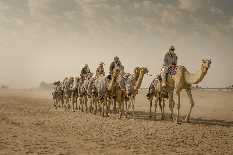 jo-kearney-video-photos-caravan-caravanphotography-travel-portraits-prints-for-sale-dubai-camels-camel-herder-dubai-UAE-desert-racing-camels-caravan.jpg