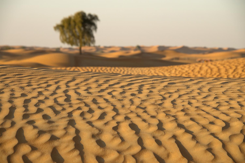 jo-kearney-video-photos-photography-travel-portraits-prints-for-sale-dubai-landscape-sand-dunes-landscape-photography-dubai-UAE-desert.jpg