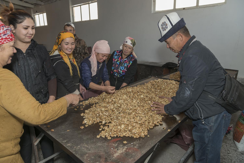 walnuts-picking-kyrgyzstan-child-arslanbob-soviet-union-market-selling-walnuts.jpg