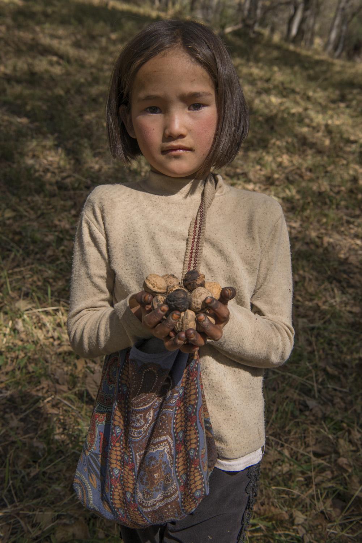 walnuts-picking-kyrgyzstan-child-arslanbob-soviet-union-russia-girl-picking-walnuts.jpg