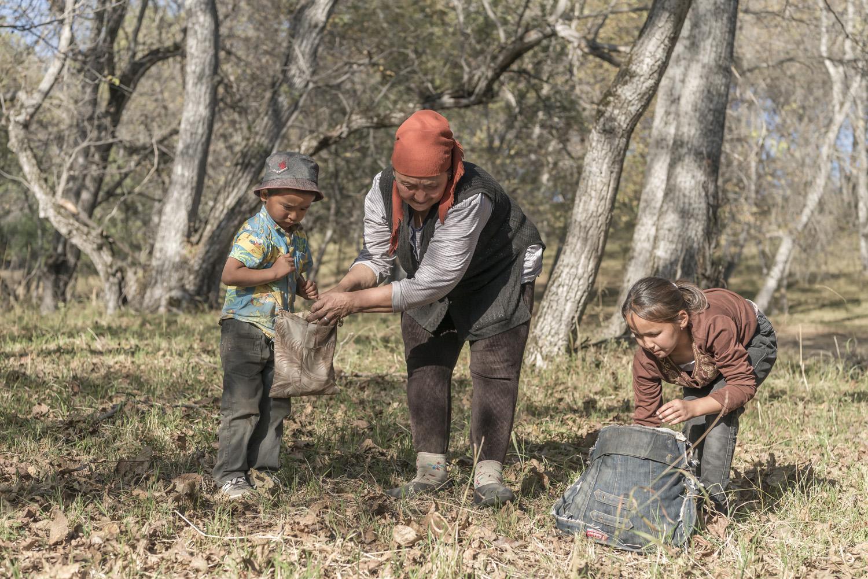 walnuts-picking-kyrgyzstan-child-arslanbob-soviet-union-russia-family-picking-walnuts.jpg