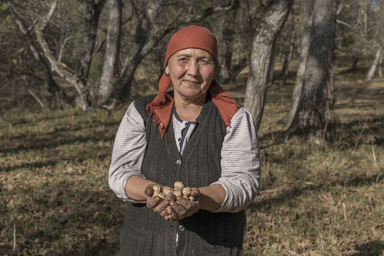walnuts-picking-kyrgyzstan-child-arslanbob-soviet-union-russia-woman-handful-walnuts.jpg