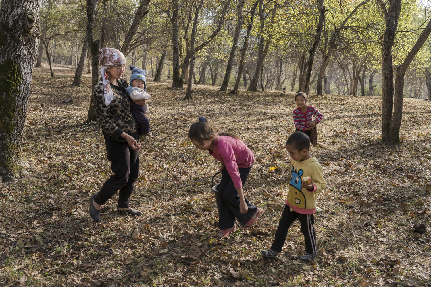 walnuts-picking-kyrgyzstan-child-arslanbob-soviet-union-russia-picnic-camping-family-picking-walnuts.jpg