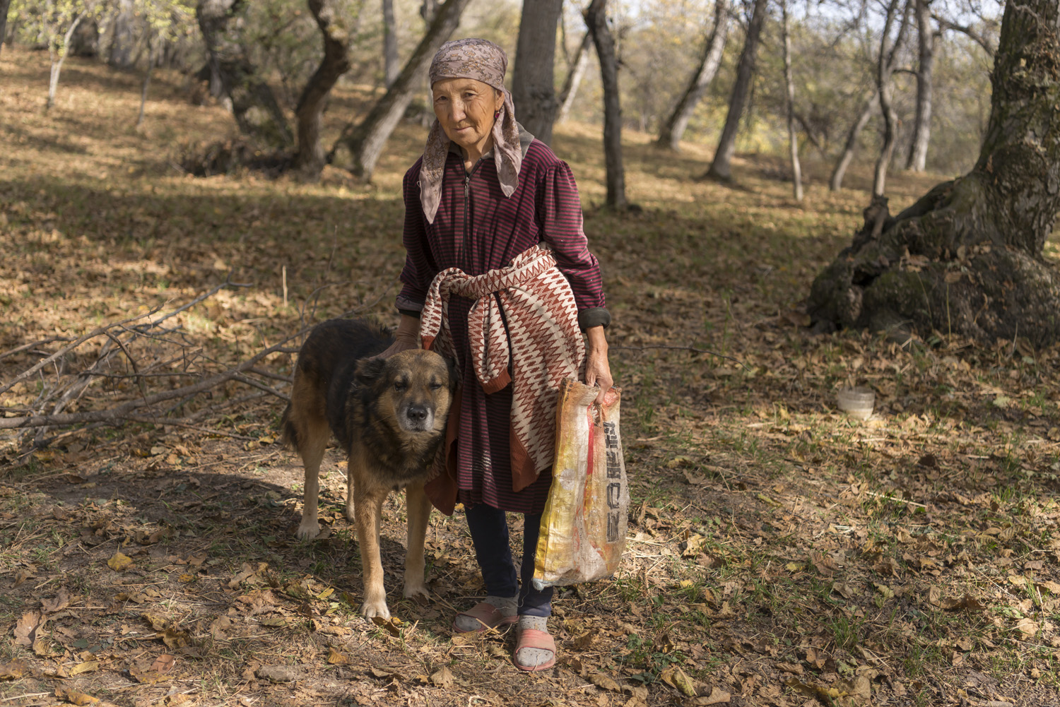 walnuts-picking-kyrgyzstan-child-arslanbob-soviet-union-russia-old-woman-forest-collectingh-walnuts.jpg