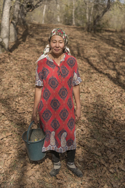 walnuts-picking-kyrgyzstan-child-arslanbob-soviet-union-russia-woman-kyrgyz-collecting-walnuts.jpg