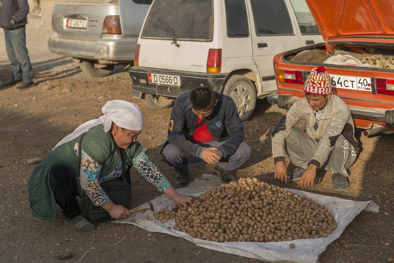 walnuts-kyrgyzstan-arslanbob-soviet-russia.jpg
