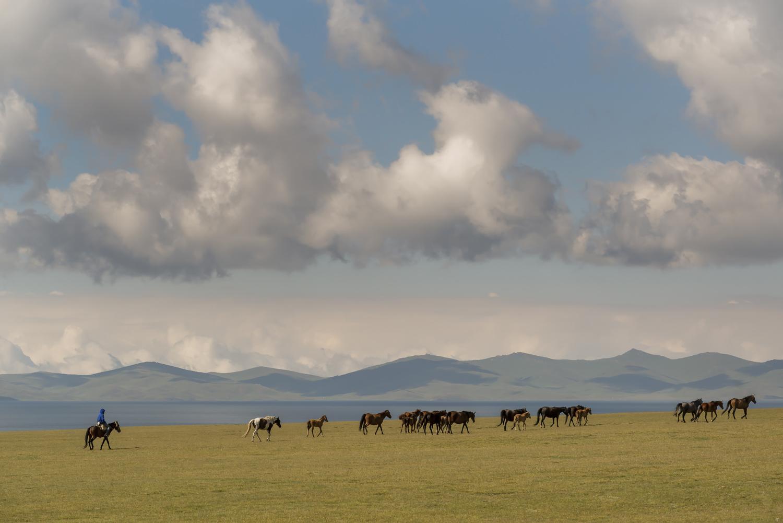 kyrgyzstan-nomads-lake-song-kul-jo-kearney-video-photography-soviet-herding-horses.jpg