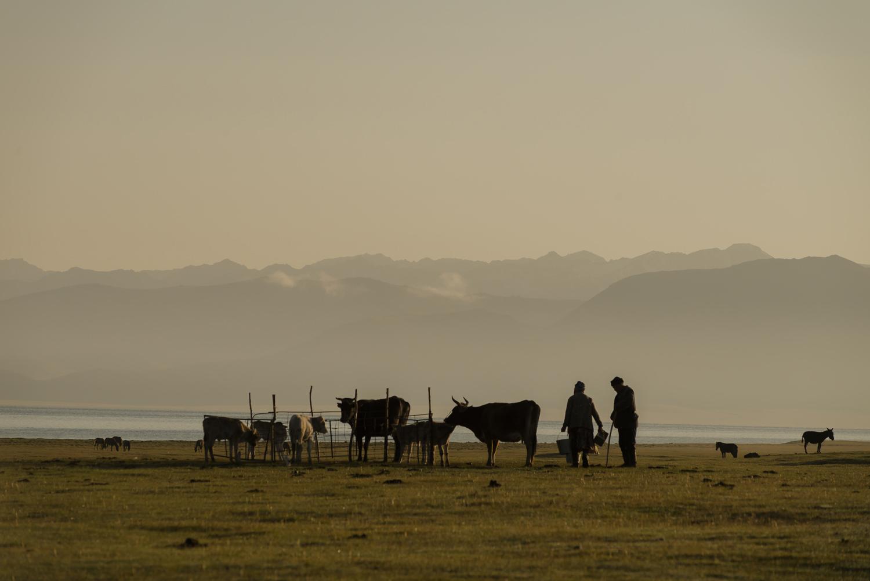 kyrgyzstan-nomads-lake-song-kul-jo-kearney-video-photography-soviet-milking-silhouette.jpg