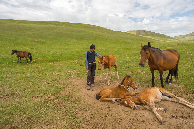 kyrgyzstan-nomads-lake-song-kul-jo-kearney-video-photography-boy-horses.jpg