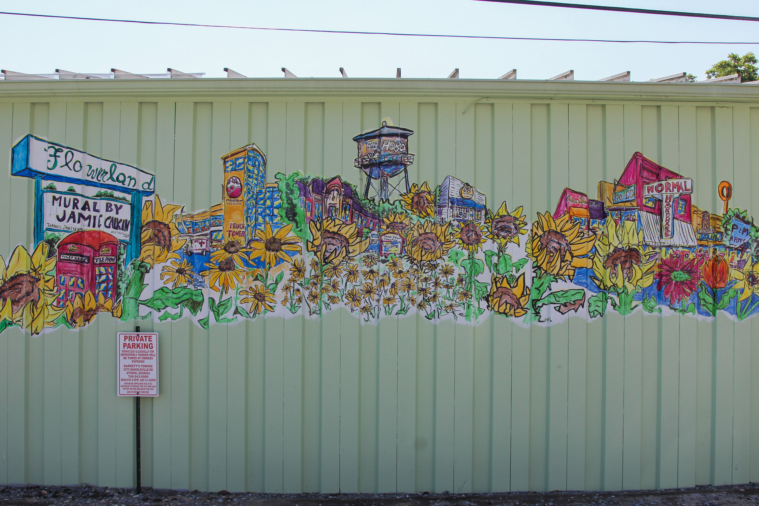 Flowerland Mural (i shared folder) - photo credit: Reann Huber    Started 2015, Completed 2016    Waterproof Inks on corrugated siding    3 sides: 2 sides 4x40ft, front side 2x30ft    Located 823 Prince Ave, Athens, GA    photo credit: Reann Huber