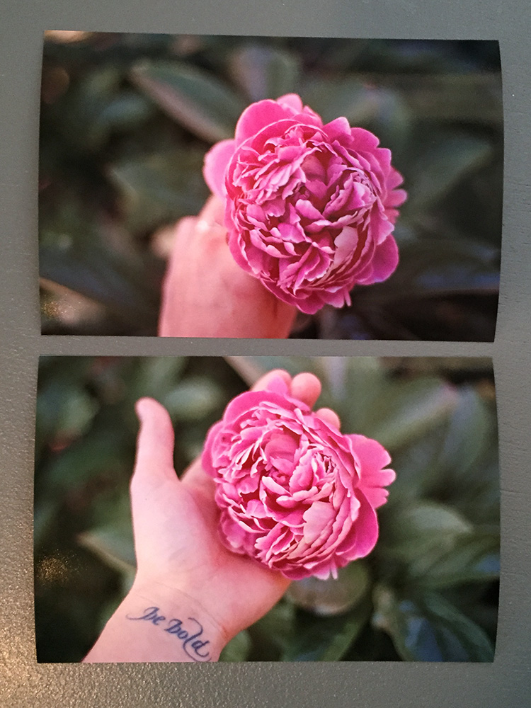I think these are my favorite photos from the test roll.