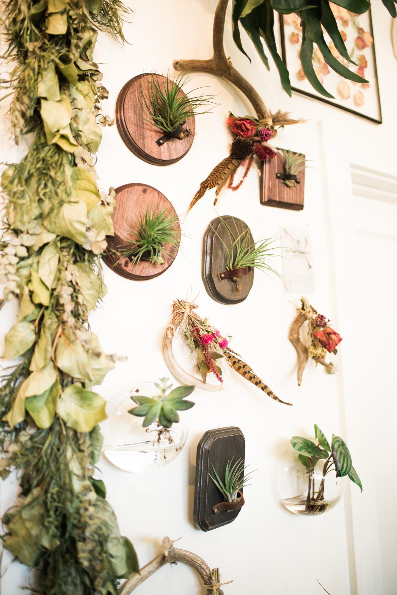 Sarah Hooker Photography | West Asheville Instameet Flora