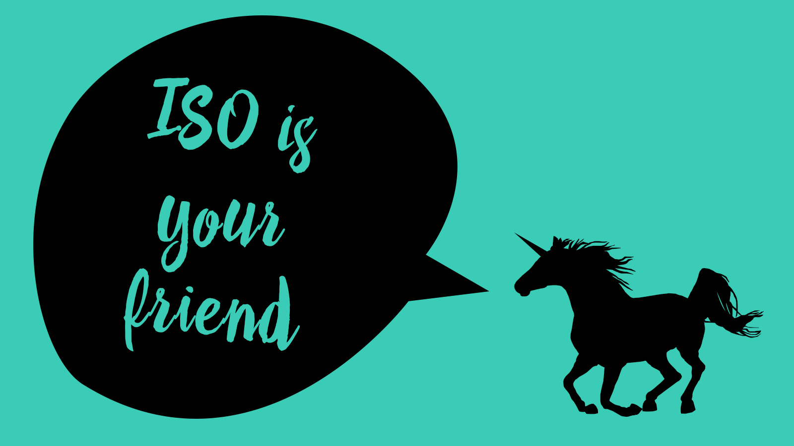 ISO is Your Friend | A Tutorial by Sarah Hooker Photography