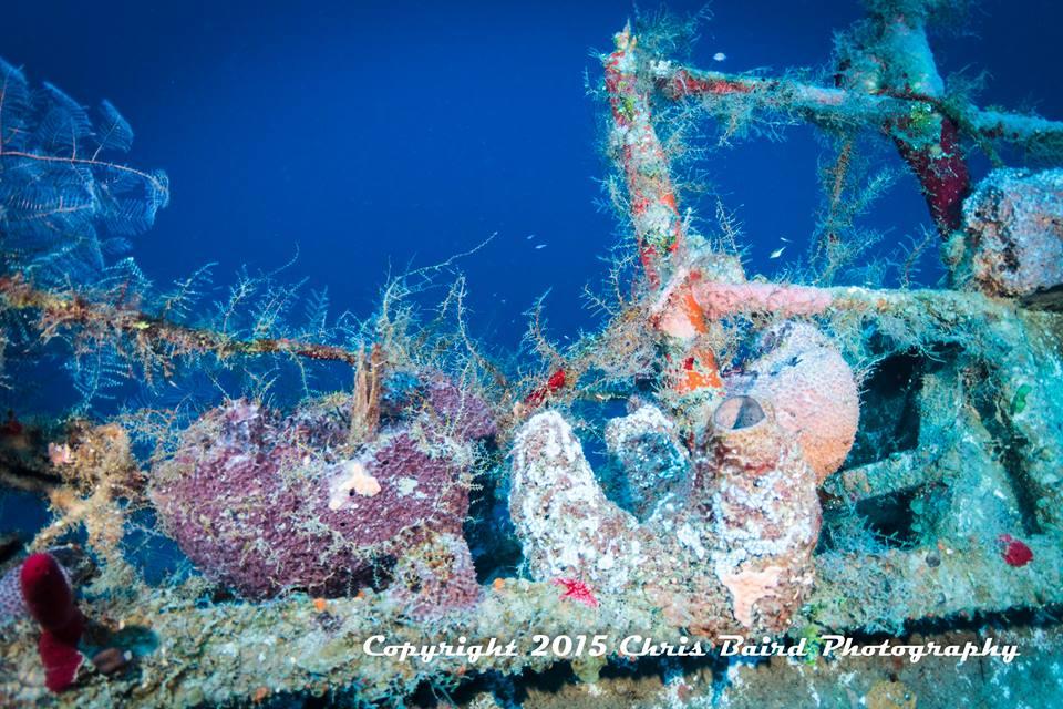12 years of undersea growth