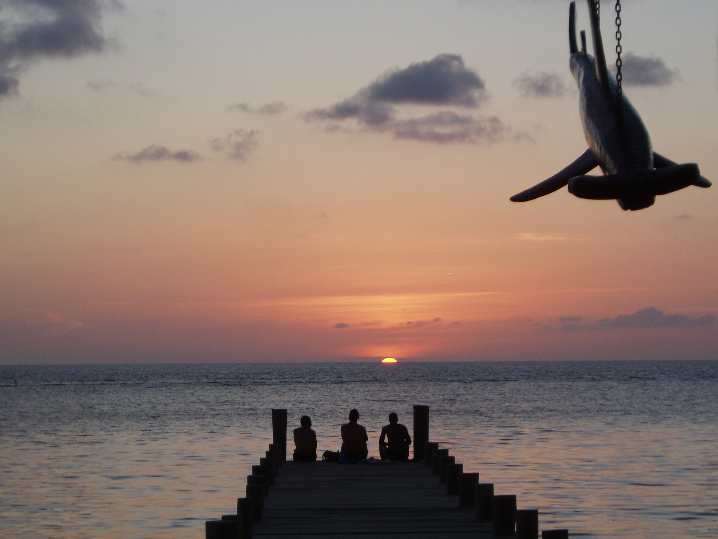 Hammerhead Sunset