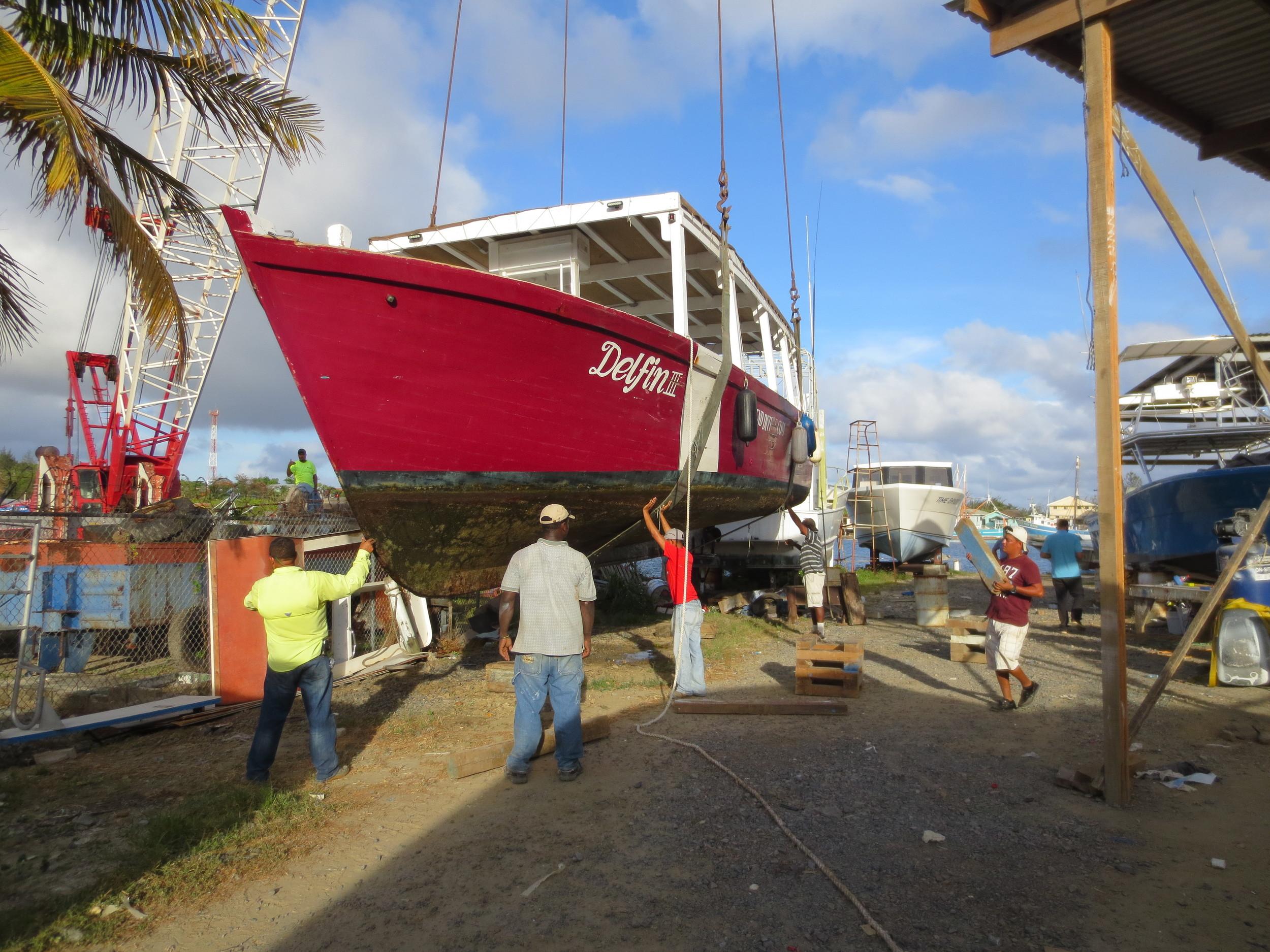 A holiday for Delfin at Martinez Shipyard