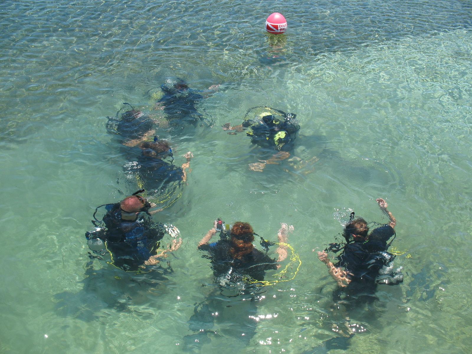 SCUBA Divers!