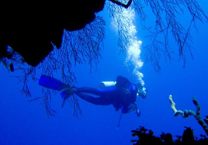 Open Circuit Scuba diver with classic tell-tale bubbles.