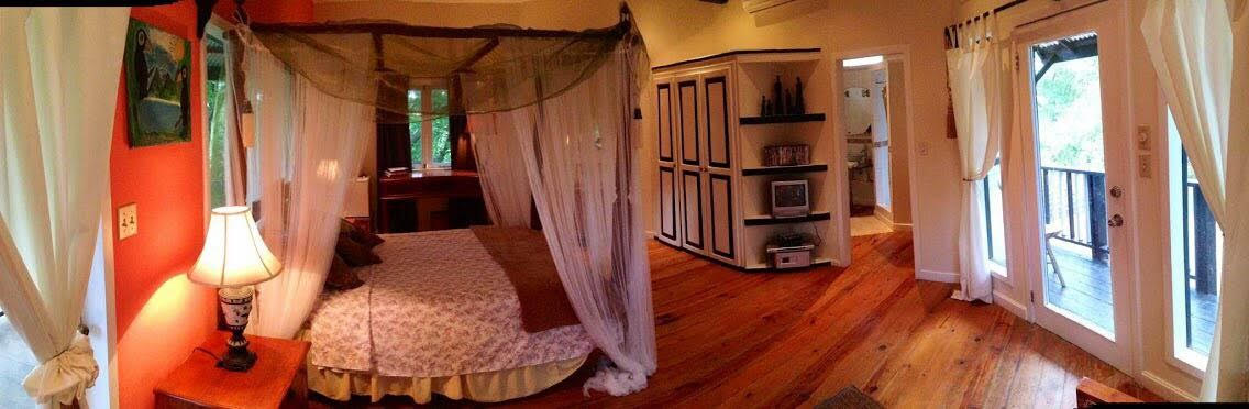 Lily Pond - Room 1