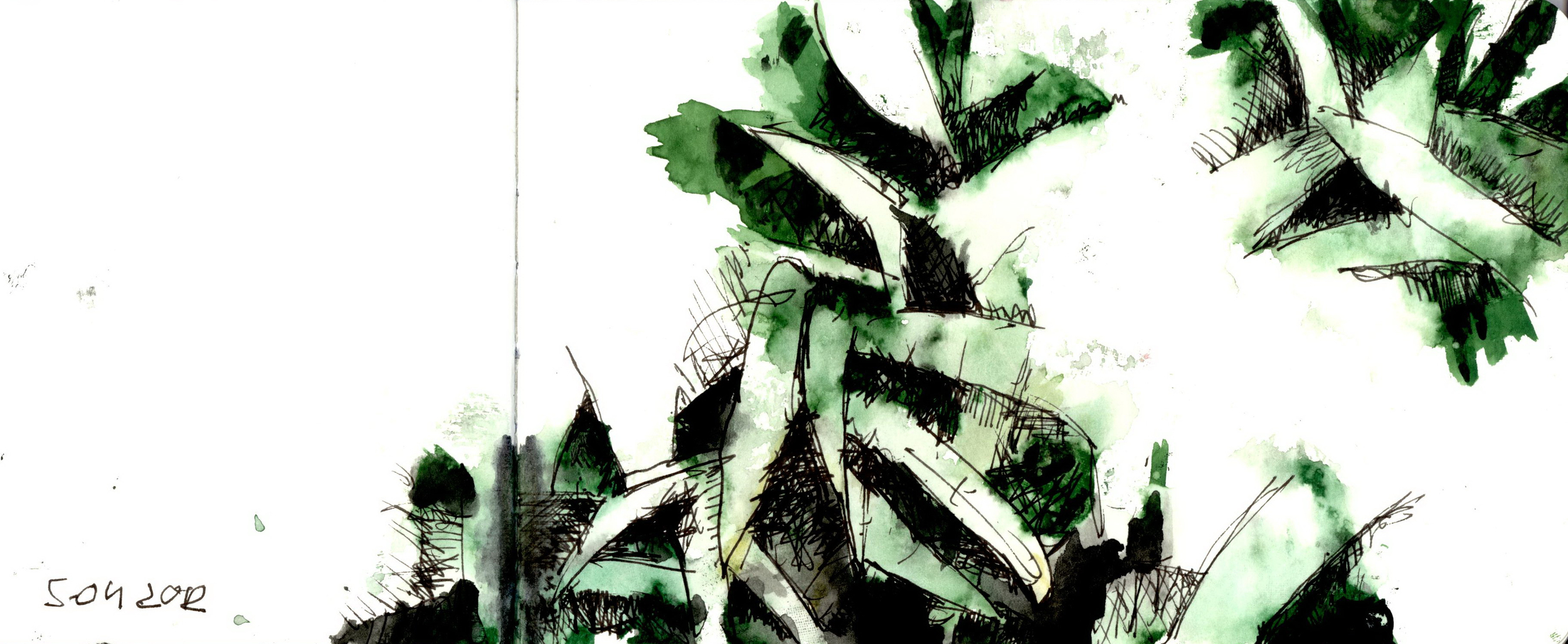 5.04.2012 Nature
