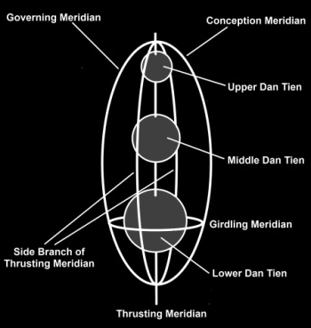 A simplified depiction of the human spine in Chinese subtle anatomy. It can be used to visualize the 3 Dan Tiens and the circuit of the microcosmic orbit (article to come)...