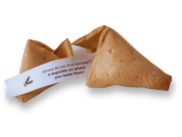 christmas cracker joke fortune cookies