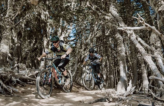 Blake and Neil, popping out into the open after riding through some of the most beautiful forest I've ever seen. Straight into the last big descent we rode in Patagonia last week. Thanks @gabobenoit @patagoniabikerschile for the most incredible week of riding, exploring and red wining. #patagonia #mtb